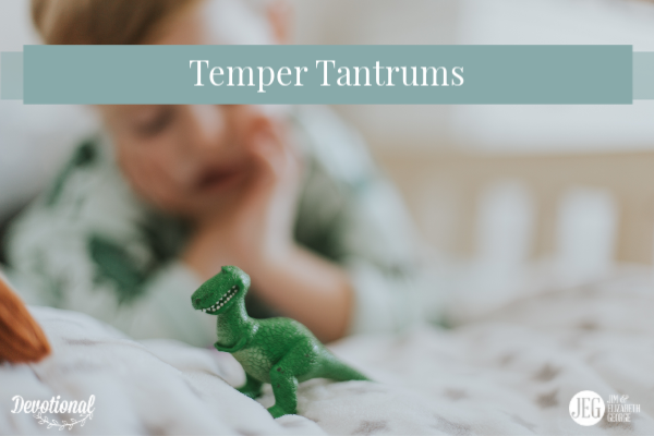 Temper Tantrums by Elizabeth George