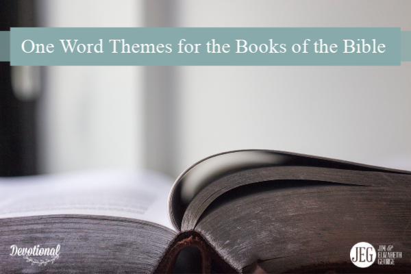 One-Word Themes for All the Books of the Bible by Elizabeth George and Jim George