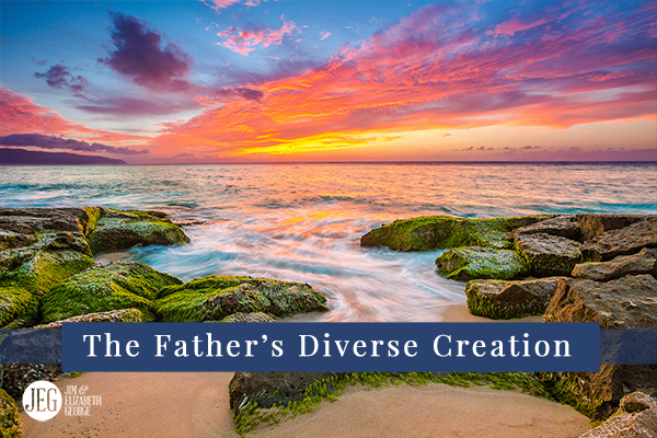 elizabeth-george the-fathers-diverse-creation