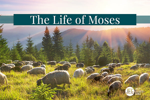 A Study on the Character of Moses