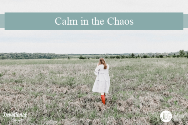 Calm in the Chaos by Elizabeth George