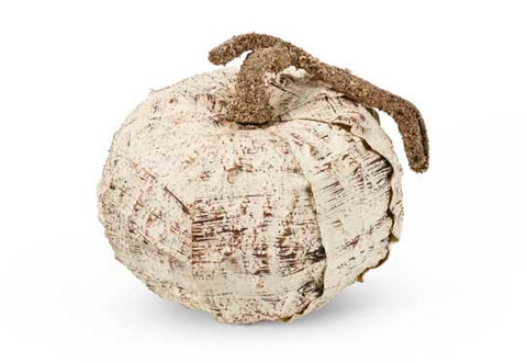 Birch Pumpkin with Brown Stem - Courtyard Style