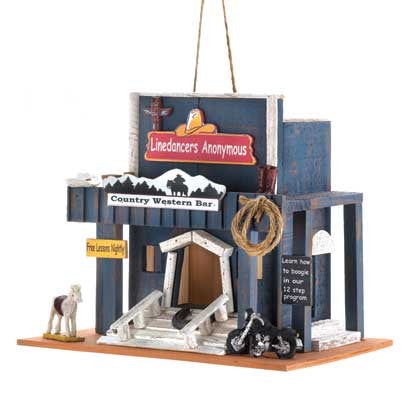 Country Western Dance Hall Birdhouse