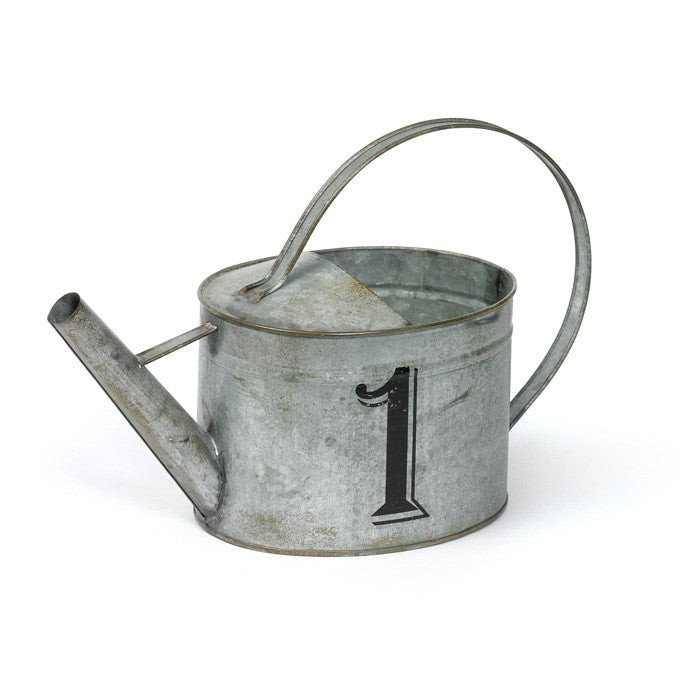 #1 Watering Tin Can- Set Of 4
