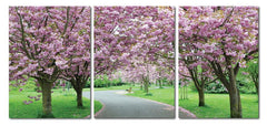 Spring in Bloom Mounted Photography Print Triptych