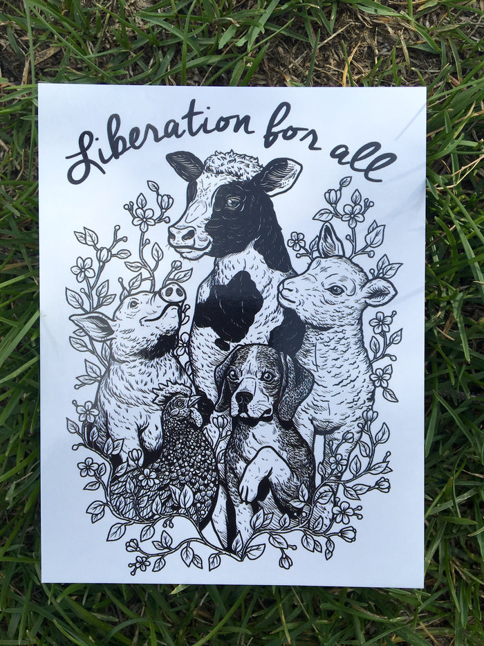 Liberation For All Postcard