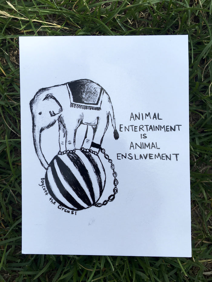100% Recycled Animal Entertainment Is Animal Enslavement Postcard