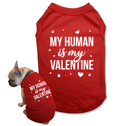 My Dog / My Human Is My Valentine