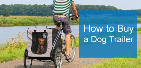 How to Choose a Dog Bike Trailer