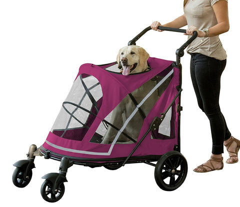 Pet Gear PG885NZBBA Strollers Boysenberry Finish
