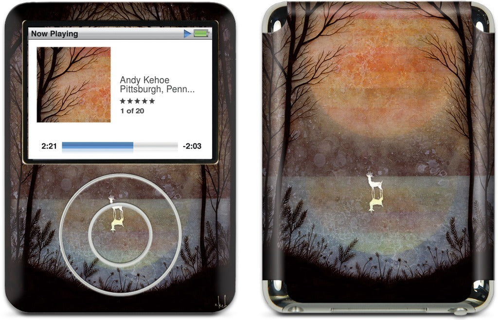 A Placid Pause iPod Skin