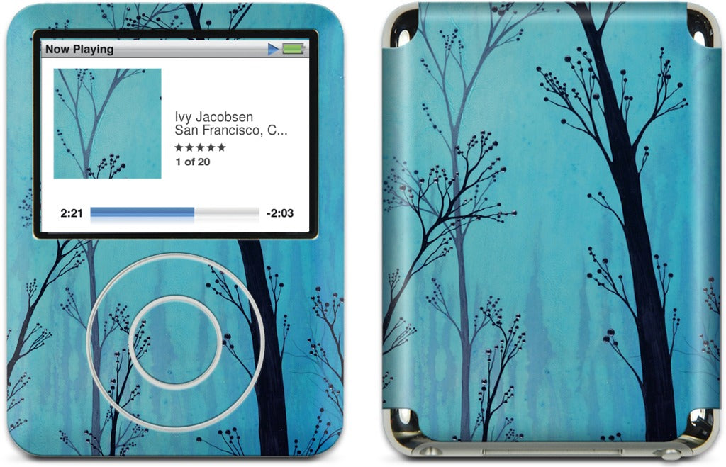 Anise No 28 iPod Skin