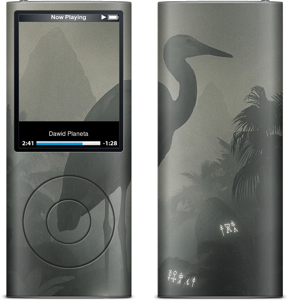 Treasure iPod Skin