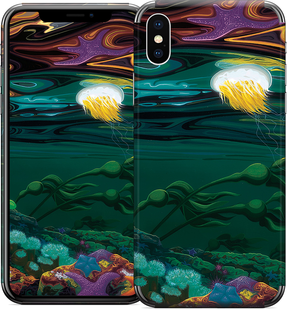 Burnaby Narrows iPhone Skin