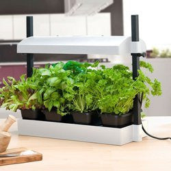 Micro - Grow Sunblaster Light Garden - White