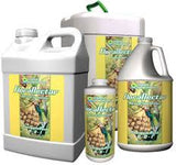GH Flora Nectar Pineapple Rush