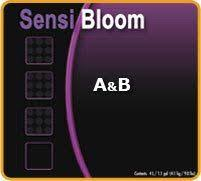 Advanced Sensi Bloom
