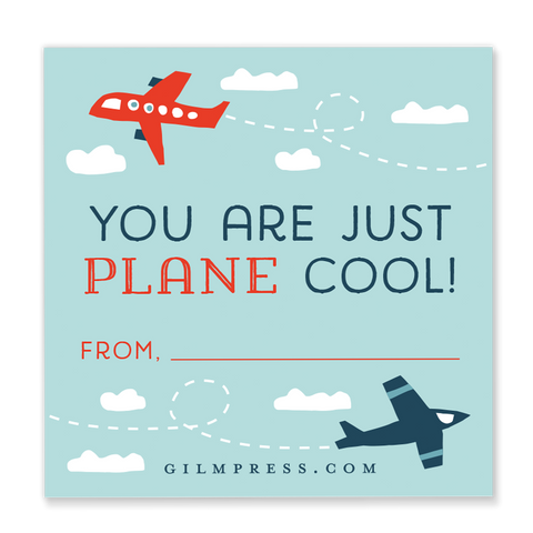 You are Just Plane Cool valentine