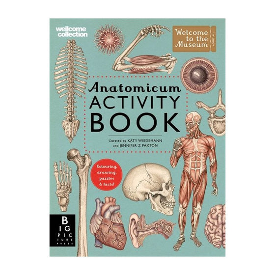anatomicum activity book by Jennifer Paxton + Katy Wiedemann