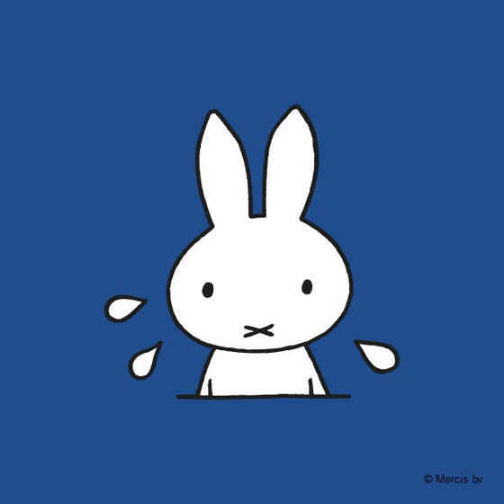 miffy at the seaside | dick bruna | back in