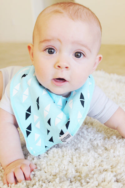 Arrow Set: Four Baby Bandana Drool Bibs + Free Pacifier Clip