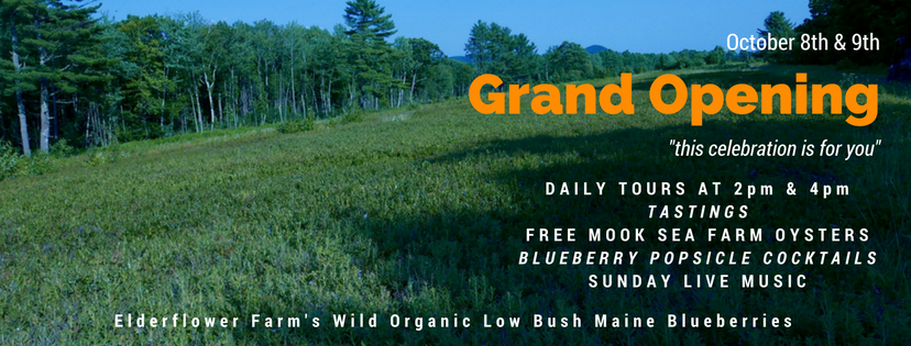 GRAND OPENING SATURDAY: SPLIT ROCK ORGANIC BLUEBERRY VODKA WITH ELDERFLOWER FARM