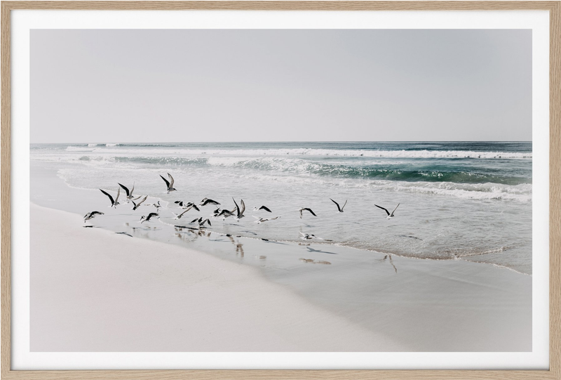 Donna Delaney - Beach Birds 2 Print Landscape (various sizes)