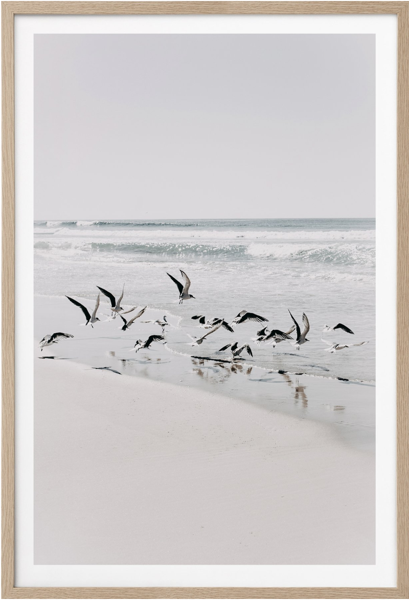 Donna Delaney - Beach Birds 2 Print Portrait (various sizes)