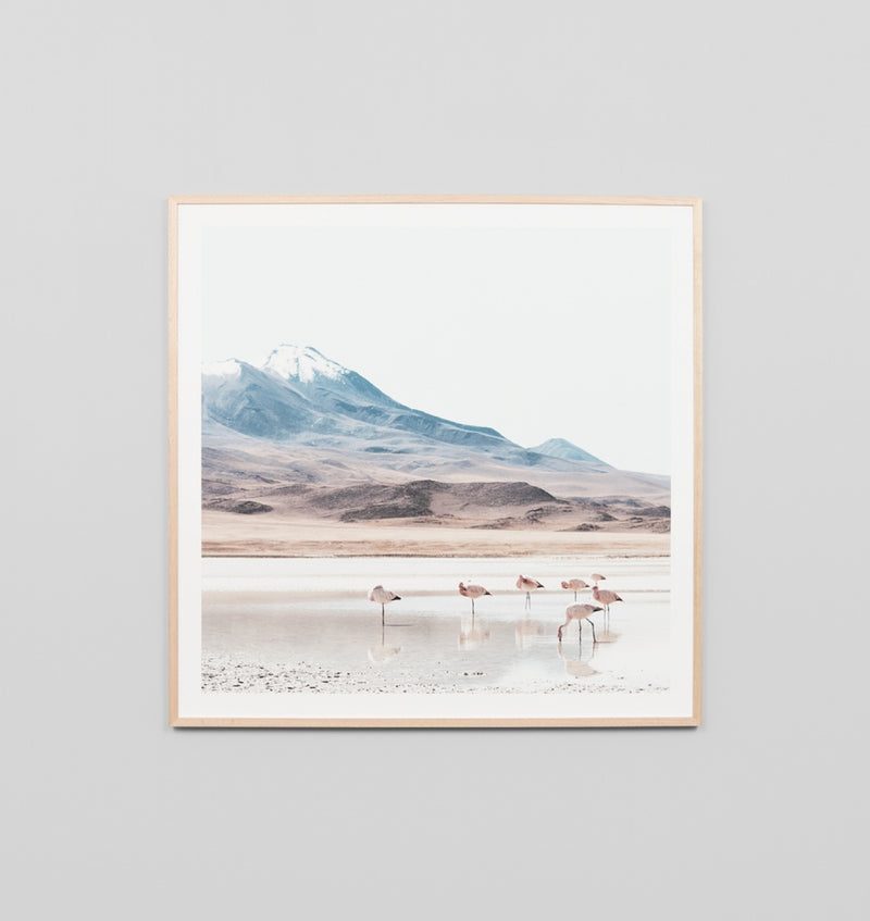 Middle of Nowhere Bolivia Print (4545503461460) (6148832264380)