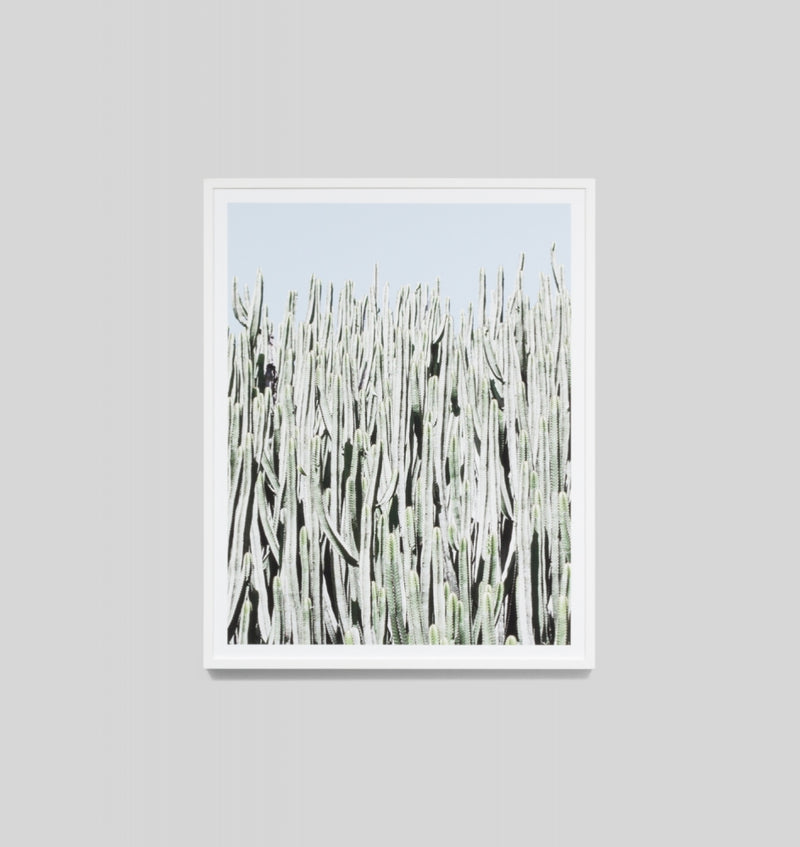 Middle of Nowhere Cactus Wall Portrait Print (4545889173588)