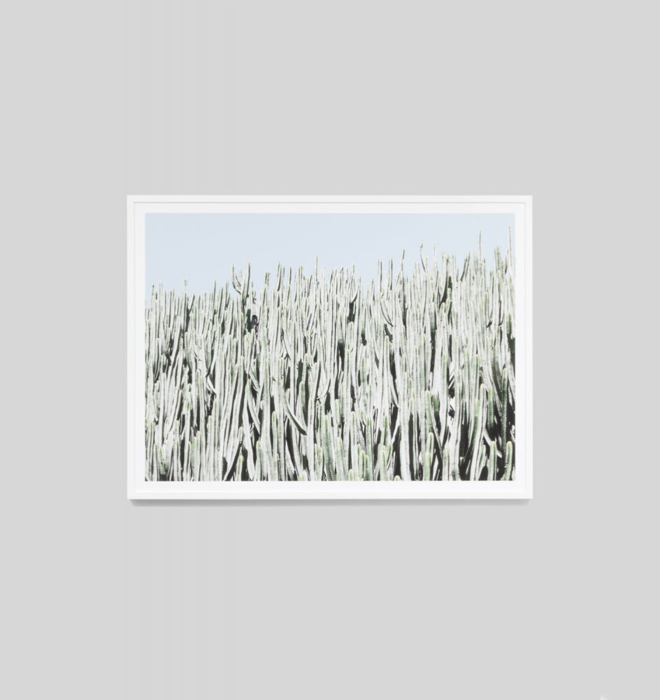 Middle of Nowhere Cactus Wall Print (4545509261396)