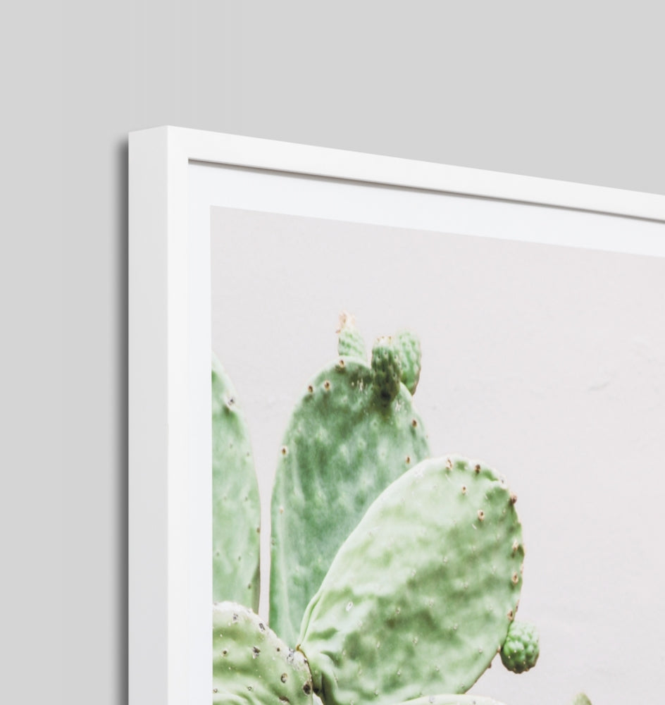 Middle of Nowhere Prickly Pear Print (4546158821460)