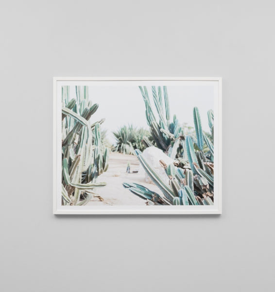 Middle of Nowhere 'Cactus Path' Framed Print - STORE PICK UP ONLY