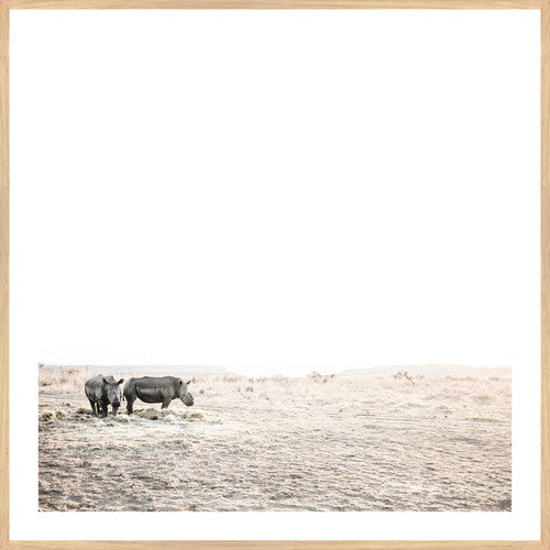 Rhino Duo Print - Various sizes (3739944091732)