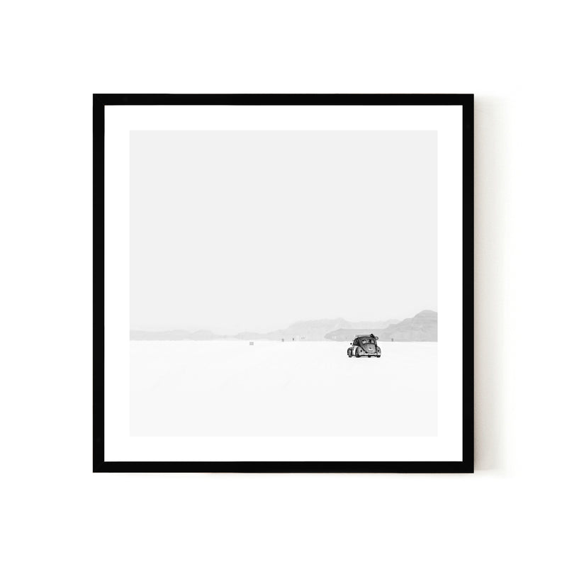 Snow Bug Print - Various sizes (4562424922196)
