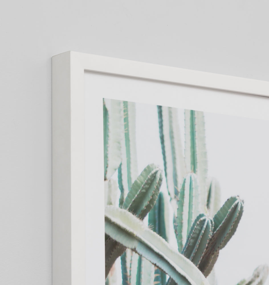 Middle of Nowhere 'Cactus Path' Framed Print (2389782921300)