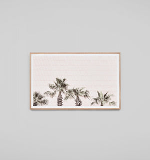 Rooftop Palms Blush Framed Print (4588963594324)