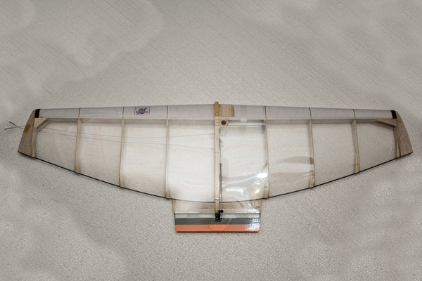 Model F2D with ellipsoid wing + carbon trailing edge - viko-shop.com
