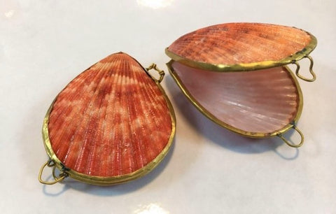 Tigerina Mussel Shell Purse