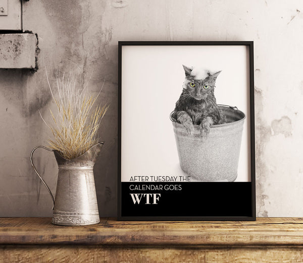 after Tuesday the Calendar goes WTF Funny Cat Poster Print Quote Art