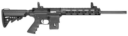 Smith & Wesson PERFORMANCE CENTER M&P15-22 SPORT