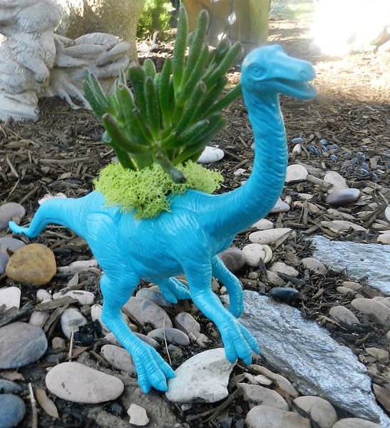 Blue Dinosaur Planter