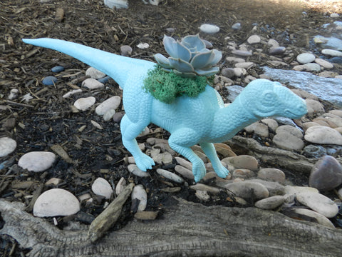 Light Blue Dinosaur Planter