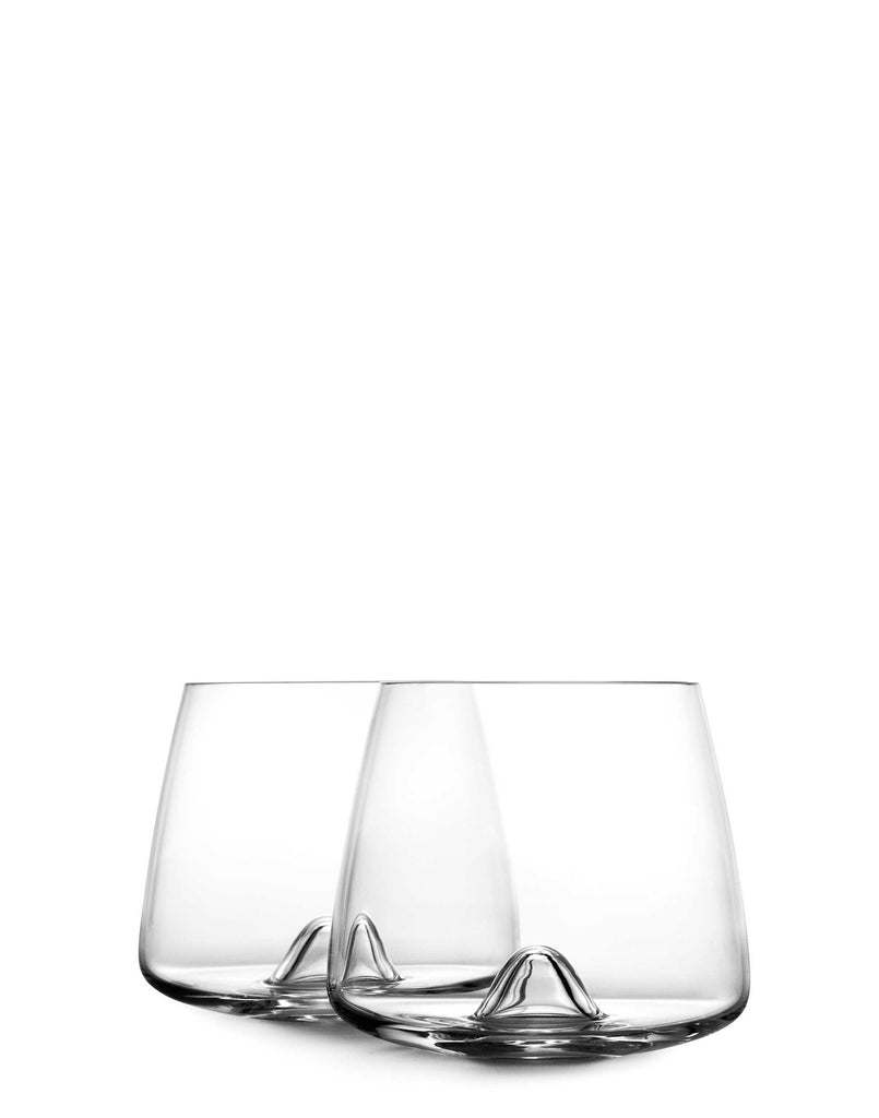 Whiskey Glasses Set of 2