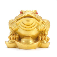 Classic Feng Shui Money Fortune Toad - Home OfficeTabletop Ornaments - 6 Lynx - Boho Accessories
