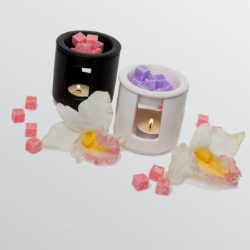 Peach Scented Cubes Wax Melts