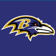 NFL|Baltimore Ravens Dog