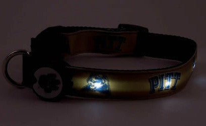 Pittsburgh Dog E Glow Collar