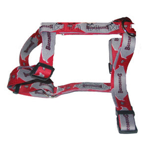 Tampa Bay Buccaneers Dog Harness
