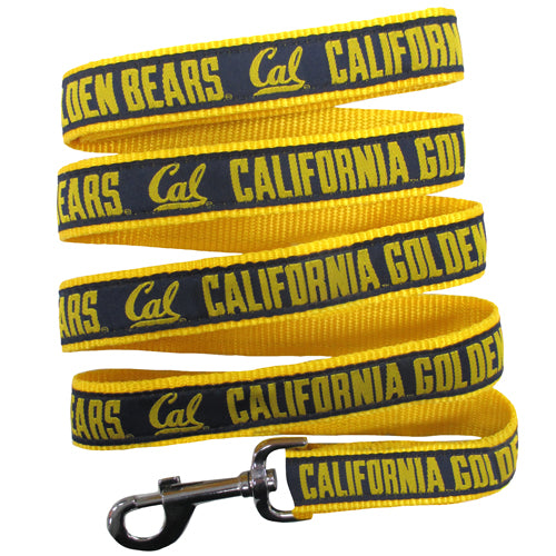 california, berkeley dog leash